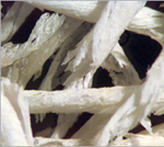 Grafton fibers